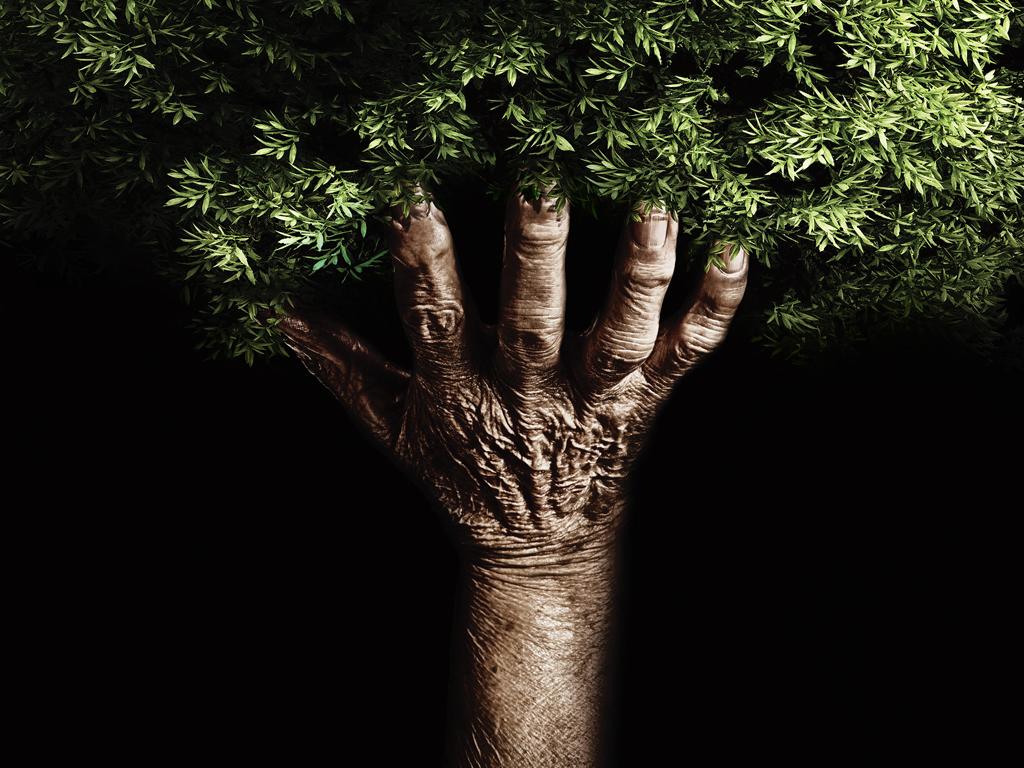Nature Human