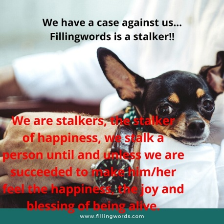 stalker fillingwords
